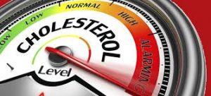 cholesterolverlagend dieet